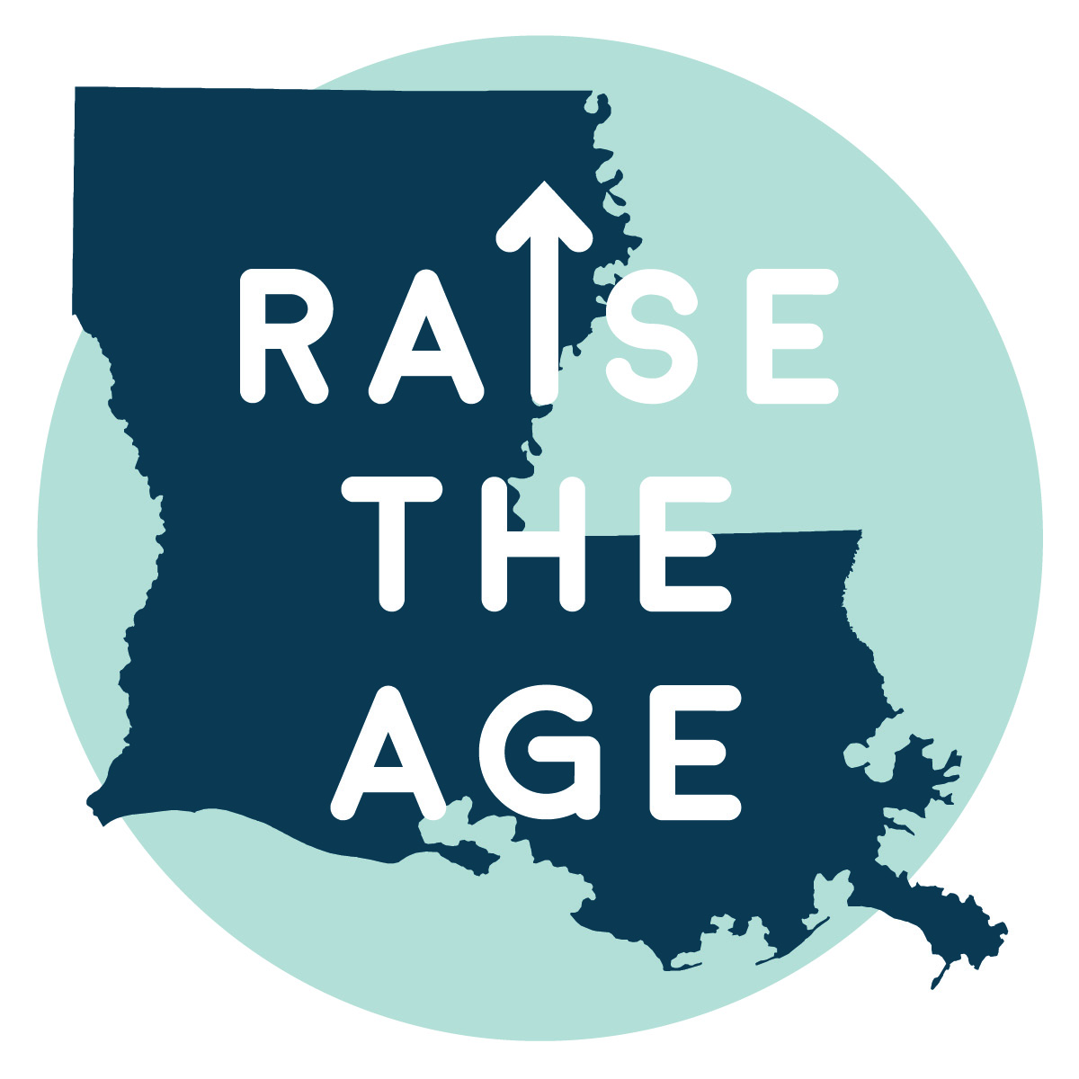 Raise the Age Logo 2
