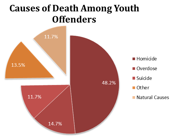 The causes of death among arrested, detained, incarcerated, or transferred youth.