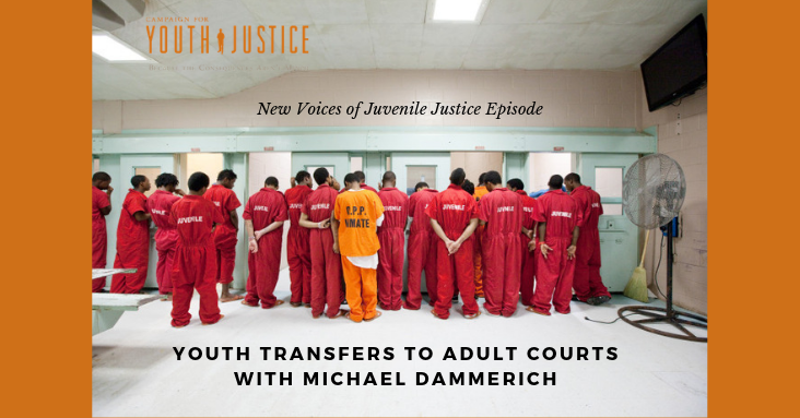 Youth Transfers to Adult Courts with Michael Dammerich