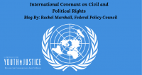International Covenant on Civil and Political Rights Submission