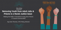 Removing Youth from Adult Jails & Prisons is a Racial Justice Issue: Making the Shift in Connecticut away from Prisons & Toward Communities