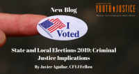 State and Local Elections 2019: Criminal Justice Implications