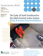 The Color of Youth Transferred to the Adult Criminal Justice System: Policy and Practice Recommendations