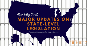 Major Updates on State-Level Legislation