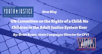 UN Committee on the Rights of the Child: No Children in the Adult Justice System Ever