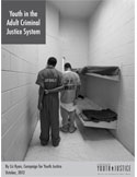 youth in adult criminal justice system